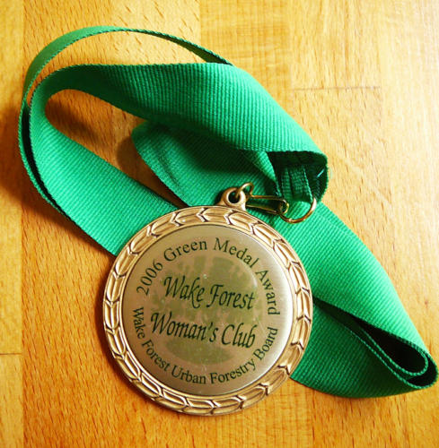 Town Green Medal Award, 2006